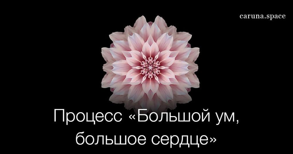 Большой ум большое сердце